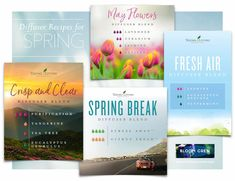 Diffuser Blends: SPRING Geranium Young Living, Young Living Eucalyptus, Lavender Diffuser, Diffuser Recipes, And Just Like That, Spring Has Sprung, Diffuser Blends, Young Living Essential Oils, New Beginnings
