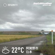 おはようございます! 雨・風ともに止んで落ち着いてます~