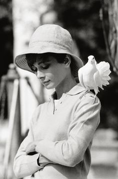 Audrey // photo by Terry O'Neill