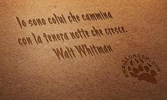 """Ci sono parole che si uniscono e diventano pesia, senza altro che la loro magia. Queste per me ne fanno parte: poche parole, una musica che sento entrarmi dentro. Proseguono poi con """"io chiamo la terra e il mare per metà occupati dalla notte"""". Da """"Foglie d'erba""""  Io sono colui che cammina con la tenera notte che cresce.  Walt Whitman  #waltwhitman,"""