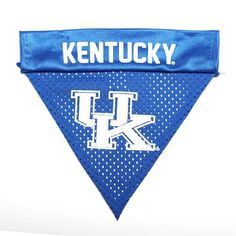 Kentucky Wildcats Dog Bandana-Mesh