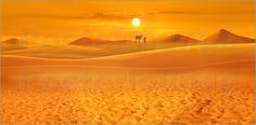 Poster: In den Weiten der Wüste - Collage - Romantic Wall Art by Mausopardia - Romantische Wandbilder von Mausopardia bei Posterlounge!
