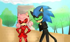Miracuolus and Sonic. My dream come true! Sonic And Amy, Sonic Fan Art, Sonic Boom, Shadow And Amy, Sonic And Shadow, Amy Rose, Sonamy Comic, Rouge The Bat, Sonic Franchise