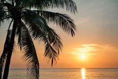 Thaimaa/Phuket #Finnmatkat Seaside Resort, Resort Spa, Khao Lak, Phuket Thailand, Varanasi, Mauritius, Family Life, Beautiful Places, Sunset