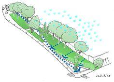 Funcionamiento del sistema de drenaje