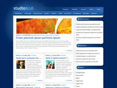 StudioBlue Magazine WordPress Theme. Pinned Laurence Autorino
