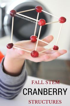 Thanksgiving STEM Building Cranberry Structures. Fall engineering activity.