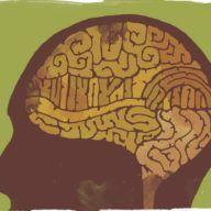 """Beynin gizli hazinesi """"prefrontal korteks"""" insan davranışına dair pek çok şeyi açıklıyor"""