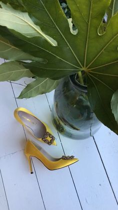 Petite Size Silk Covered Jeweled Classic Court Heels Syndee By Pretty Small Shoes Wedding Guest Heels, Light Blue Heels, Court Heels, Grey Yellow, Petite Size, Colour Black, Petite Fashion, Bold Colors, Shoes Heels