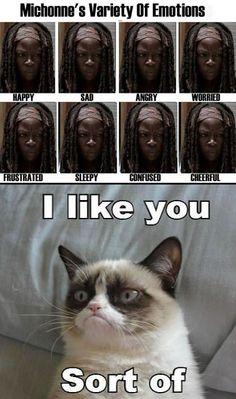 Grumpy cat likes Michonne. Walking Dead & Grumpy cat :O *dies* Walking Dead Funny, Walking Dead Zombies, Fear The Walking Dead, Gato Grumpy, Grumpy Cat Meme, Twd Memes, Funny Memes, Hilarious, Breaking Bad
