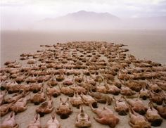 Spencer Tunick to Stage Large-Scale Nude Installation at 2013 Burning Man Festival