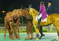 Joey from War Horse greeting with actual racehorse in Japan
