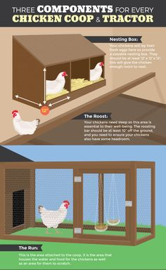The Chicken Tractor: Three Components for Every Chicken Coop and Tractor