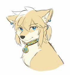 BOTW Link as a wolf?  He's gotta meet TP Link