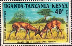 Stamp Postage Stamps Kenya Uganda Tanzania 1972 Ugandan Independence Fine Used SG 319 Scott 254 Tanzania, Uganda, East African Community, World Wild Life, Stamp Dealers, Buy Stamps, African Animals, Commonwealth, Postage Stamps
