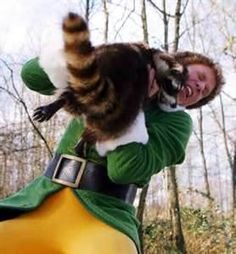 Image Search Results for elf movie