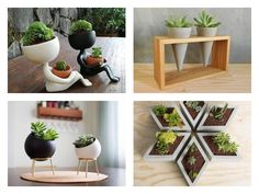 What follow next are some of the most creative flower pots that will took place in your heart! Don't miss to see it and to share it! Indoor Mini Garden, Indoor Places, Iron Holder, Hanging Flower Pots, Wooden Ladder, Pot Sets, Types Of Flowers, Creative Decor, Amazing Flowers