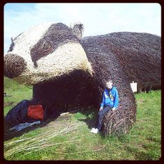 Check out the huge wicker badger! #wicker #badger #photo  pinned by wickerparadise.com