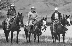 The dream team Ray Hunt, Tom & Bill Dorrance Photographer: Julie Chase Baldocchi Real Cowboy, Bill Dorrance, Ray Hunting, Boys Horses, Things Horses, ...