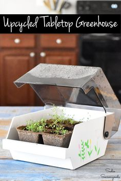 Start your seeds early this season by making a tabletop greenhouse from a floppy disk holder. It's SUCH a great way to repurpose something that's obsolete and easy to find at a thrift store! #DIYgreenhouse #startingseeds #seedlings #seedstarting #greenhouseideas #tabletopgreenhouse #growingherbs #herbgarden #indoorgreenhouse #germinatingseeds Love Garden, Garden Junk, Home And Garden, Garden Art, Easy Garden, Herb Garden, Vegetable Garden, Indoor Greenhouse, Indoor Garden
