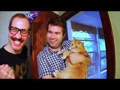 Koo Koo Kanga Roo - Cat Party (Official Video) - YouTube