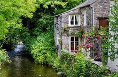 Cottage Anglais - Photos et Images Libres de Droits - iStock