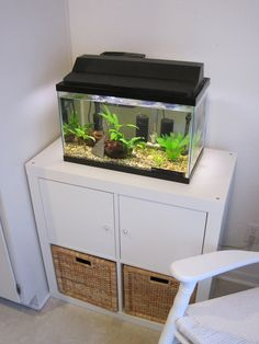 expedit as fish tank stand - Google Search