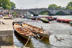 Idyllic Riichmond upon Thames, On a barmy summers afternoon. walk Hill Summer days out Life London upon Thames london Richmond Bridge, Richmond Hill, Richmond Upon Thames, London Summer, Greater London, River Thames, London Life, Rowing, Days Out