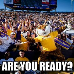 Are You Ready??? for some heart thrompin LSU Football ? Louisiana is getting ready!! - - LSU TIGERS - LSU TIGERS colors purple & gold - Louisiana State University