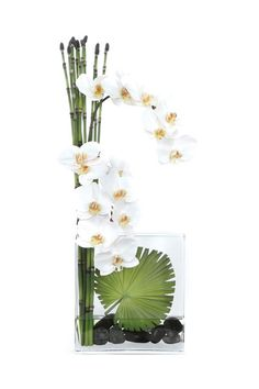 White Orchid Add some yellow, good design Hotel Flower Arrangements, Contemporary Flower Arrangements, Ikebana Flower Arrangement, Silk Floral Arrangements, Exotic Flowers, Faux Flowers, Silk Flowers, Beautiful Flowers, Art Floral