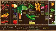 A Vegetable Garden Planner To Create The Perfect Plot Perennial Garden Plans, Potager Garden, Veg Garden, Garden Pests, Garden Art, Plan Potager, Gin, Vegetable Garden Planner, Vegetable Gardening
