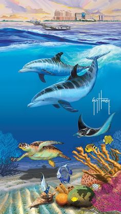 Sea World Guy Harvey