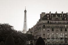 VINTAGE PARIS: Available as a fine art print, canvas or greeting card   Eiffel Tower, Paris