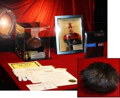 Star Trek DS9 screen-used Rare Black-Brown TRIBBLE, prop Computer CIRCUIT Board, Signed Avery Brooks Autograph, COA, Case, DVD, COMIC