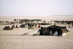 saudi arabian bedouins - Google Search