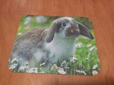 I think this is my favorite bunny!  This design and many others available for immediate FREE shipping!  Bunny Mouse Pad - Sweet Bunny