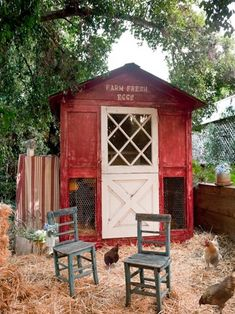 Spaces Chicken Coop Design, Pictures, Remodel, Decor and Ideas - page 2 @ mom Chicken Coop Designs, Chicken Coop Decor, Chicken Coop Plans, Building A Chicken Coop, Chicken Pen, Chicken Coup, Chicken Eggs, Keeping Chickens, Raising Chickens