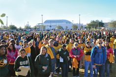 An article I wrote on the #USF Stampede of Service made it into USF Magazine.