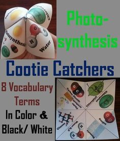 These Photosynthesis cootie catchers are a great way for students to have fun while learning about Photosynthesis, and build their vocabulary. These cootie catchers contain the following vocabulary terms on Photosynthesis:   ♦ Photosynthesis, Carbon dioxide, Chlorophyll, Chloroplast, Oxygen, Stomata, Water, and Glucose