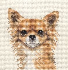 An Original counted cross stitch kit by Fido Stitch Studio. This is a counted cross stitch, i. the design is not prnted on the fabric. Long Coat Chihuahua, Chihuahua Puppies, Counted Cross Stitch Kits, Cross Stitch Embroidery, Dog Signs, Cross Stitch Animals, Cute Little Animals, Plastic Canvas Patterns, Cross Stitch Patterns