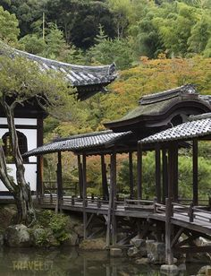 Kodai-ji Temple, Kyoto, Japan by Travel 67 - Chris Willson