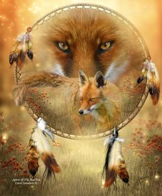 Red Fox  Creature of quiet cunning  Spirit of observation and silence  You teach us that looking and listening  Are sometimes more powerful than speaking  And when it is time to act  You are clever, quick and agile  Showing us how to use our instincts and knowing  To get what we desire  While still living in balance and harmony  With our surroundings and our inner power.    Prose by Carol Cavalaris ©  Fox photo source by Danny O'Byrne