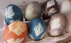 Herb-decorated Easter Eggs