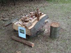 log table and stool, loose parts, outdoor kid spaces