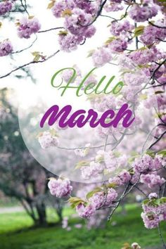 Hello March Everyone! Welcome the month of March with a smile and heart filled with gratitude. Hello March Images, Hello March Quotes, Hello January, Month Of March Quotes, Seasons Months, Months In A Year, 40 Y Fabuloso, Hello Beautiful, Beautiful Flowers