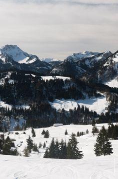 Snow Shoe Hiking in Bregenzerwald, Vorarlberg, Austria