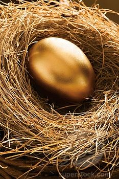 Black and Gold / Golden Egg in Nest