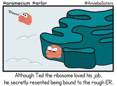Ted just wants to feel the squishy feeling of freedom…and cytoplasm. #science #comic
