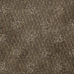 Stainmaster Petprotect Silver 84604 Pattern Indoor Carpet Dss Hadleigh Pinterest Interiors And House