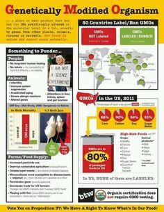 GMO ... Efff Monsanto ! #monsanto #gmo #geneticallymodified